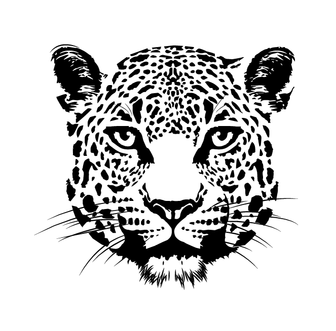 Ecosistema Jaguar