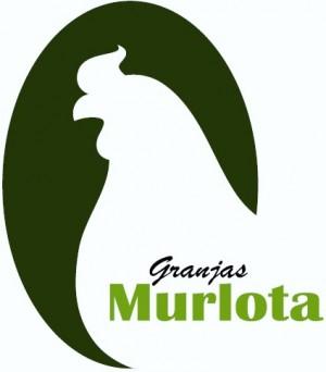 Grupo Murlota